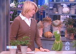 Martha Stewart & Kermit the Frog