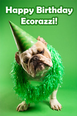 Happy 1st Birthday, Ecorazzi!