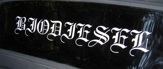 Daryl Hannah Car