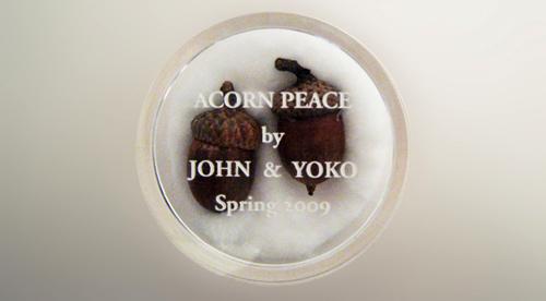 acornpeace680