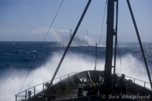 Shonan Maru No 2 Fires Water Cannons As SS Approach
