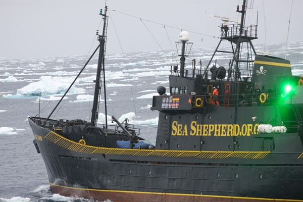 seashepherd_laser