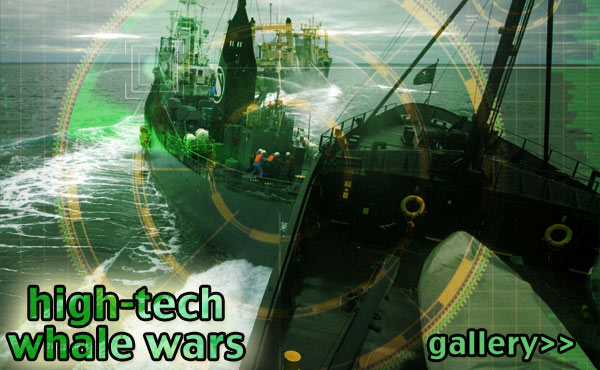 whale wars, high-tech, sea shepherd, japanese whalers