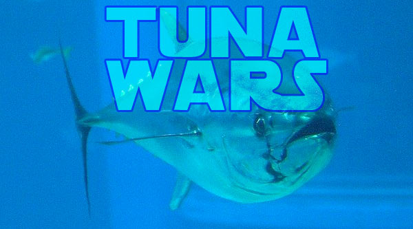 TUNA WARS, sea shepherd