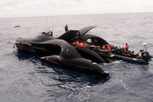 Sea Shepherd Ady Gil damaged after collision with Japanese Whaling vessel