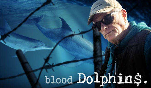 blood dolphins, the cove, ric o'barry, whale wars, sea shepherd