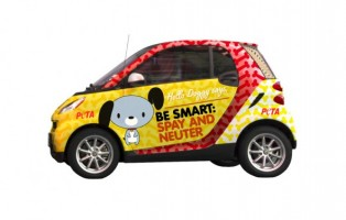 Hello Doggy Smart Car Wrapper Idea
