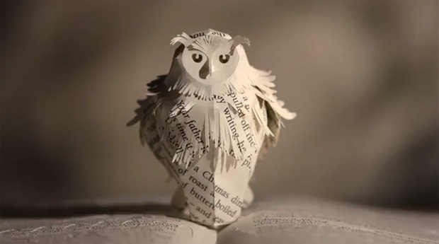 owl-potter
