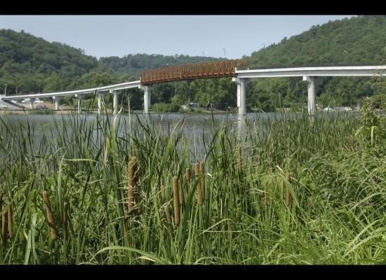Bridge green town