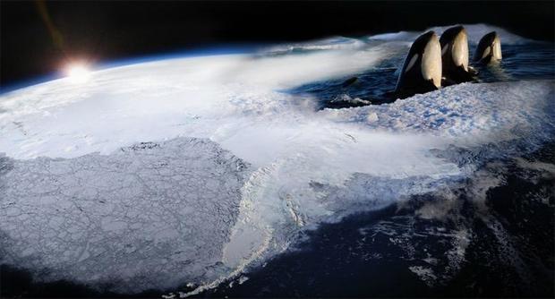 frozenplanet