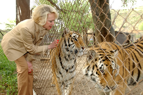 Tippi_with_tigers_cBill_Dow