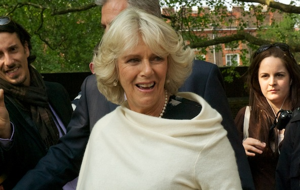 Camilla Parker Bowles works with rescue organizations