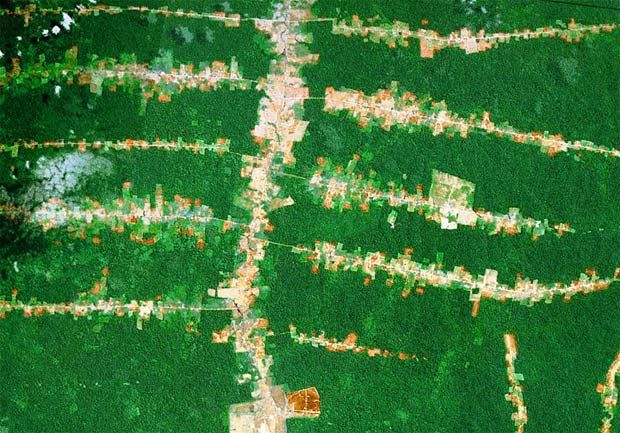 Satellite view from NASA of Rainforest destruction from roads