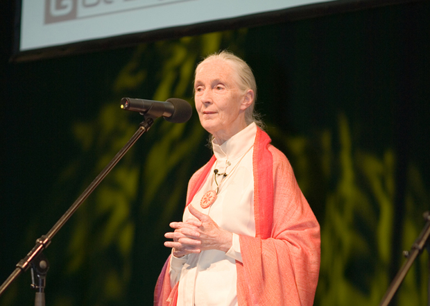 Jane Goodall wants Careerbuilder to stop exploiting chimps