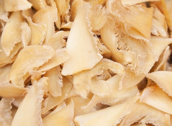 New York may be the next state to ban shark fins