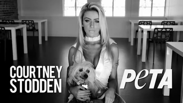 "Courtney Stodden is the lates celeb to speak up for PETA, despite ""unkind"" habit of dyeing her dog."