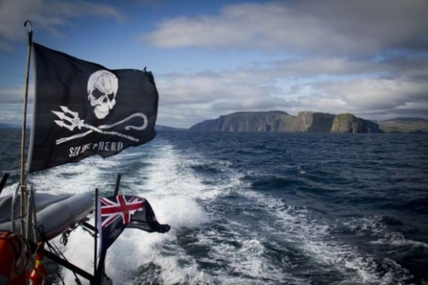 Discovery releases trailer for the spinoff series 'Whale Wars: Viking Shores'