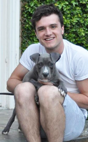 Josh Hutcherson and Driver, his 3-month-old pit bull.