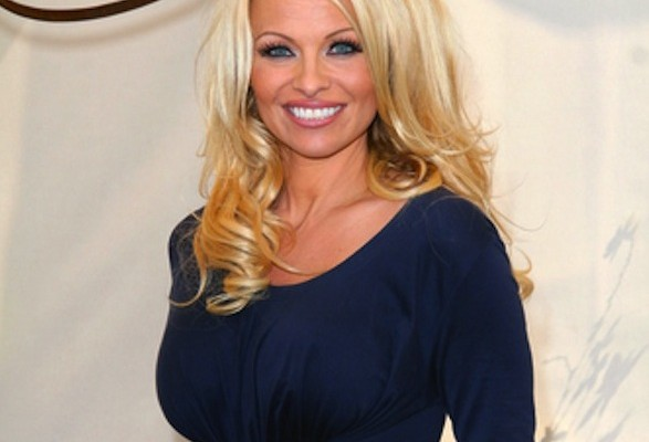 Pamela Anderson travels to Germany to ask Minister of Economics to uphold seal fur ban