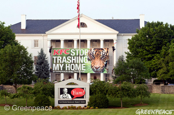Greenpeace protests KFC's rainforest destruction