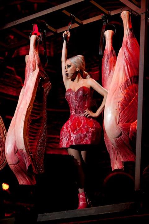 Lady Gaga's new meat dress features a strapless bodice and full miniskirt.