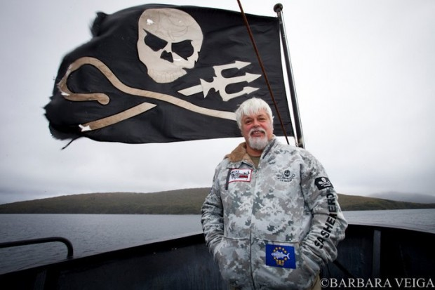 An update on Paul Watson's arrest in Frankfurt, Germany for shark conservation campaign