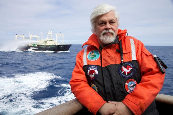 Sea Shepherd founder/president Captain Paul Watson was arrested in Germany for a 2005 Costa Rica shark campaign