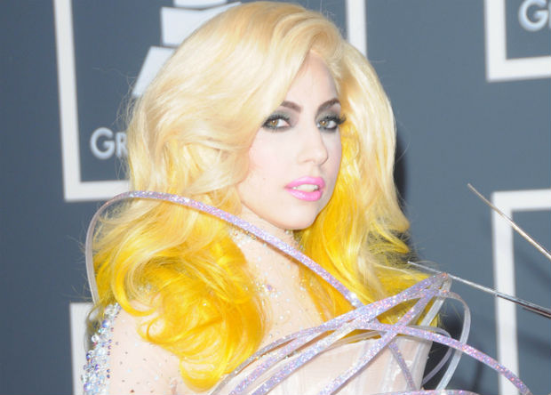 Lady Gaga wants to create hat out of cockroaches