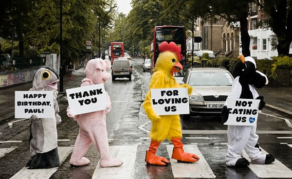 PETA celebrates Paul McCartney's 70th Birthday