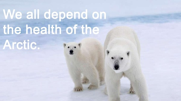 Greenpeace, Save the Arctic