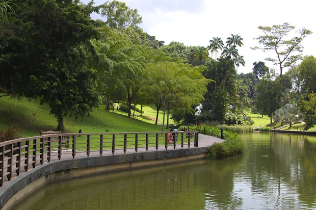 Image result for singapur botanic park
