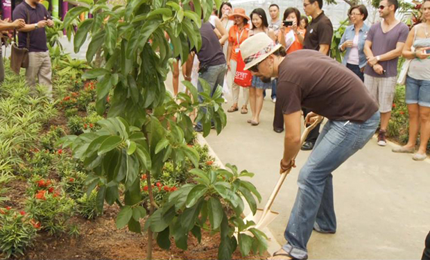 Jason Mraz Tree Planting