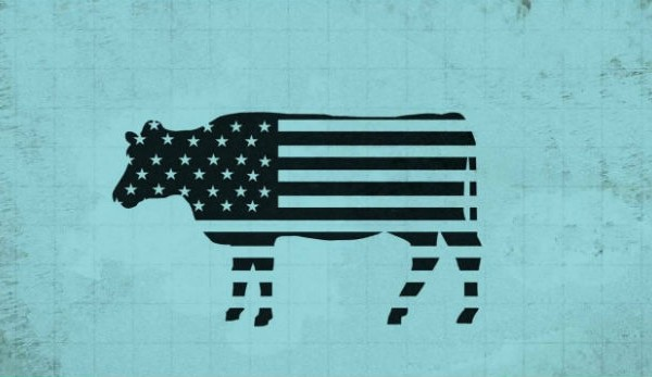 The Center for Investigative Reporting reveals livestock and hamburgers contribute to greenhouse gas pollution