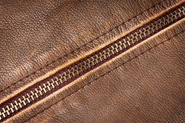 in vitro leather