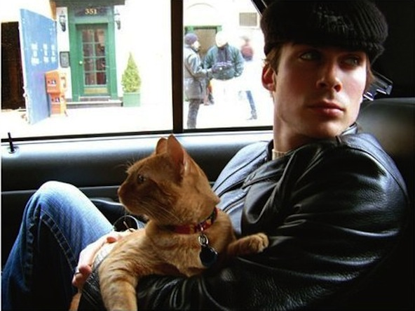 ian somerhalder and cat