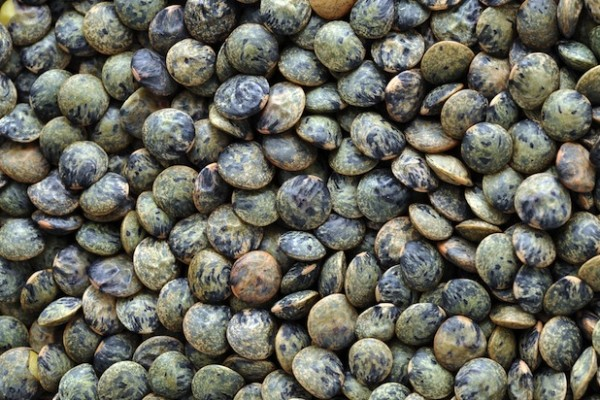 french lentils