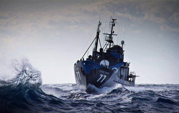 sea shepherd whale wars season 6