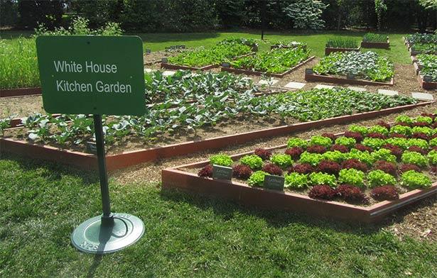 white-house-gardens