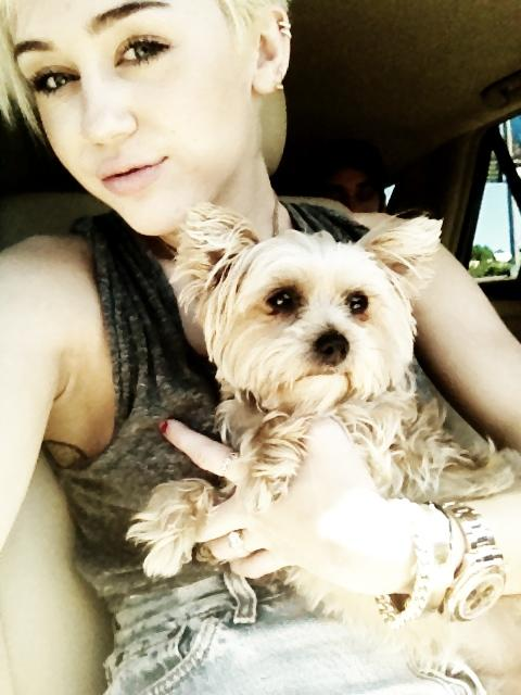 Miley Cyrus' dog Lila Dies