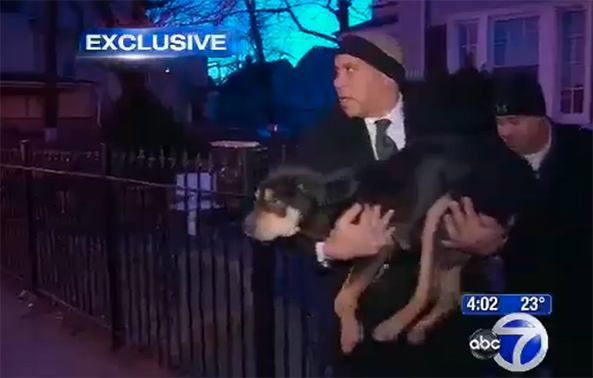 cory booker saves dog