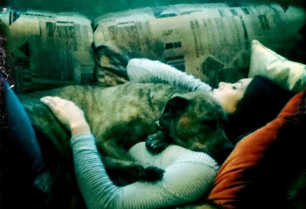 "Jessica Biel calls her dog Tina a ""55-pound blanket."""