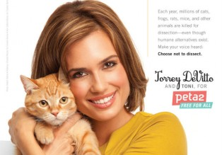 Torrey DeVitto and PETA stand up against classroom dissections