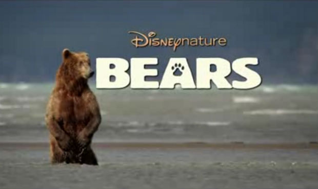 Disneynature's new environmental film titled 'Bears' focuses on two grizzly bear families
