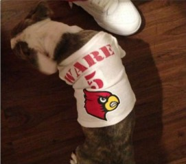 Louisville Cardinals player Kevin Ware gets dog to help heal broken leg