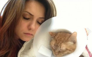 Nina Dobrev and Ian Somerhalder rush their cat to the hospital