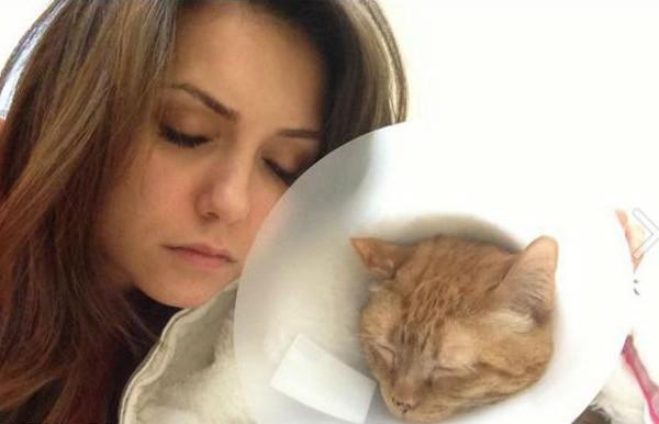 Nina Dobrev and Ian Somerhalder rush their cat to the hospital