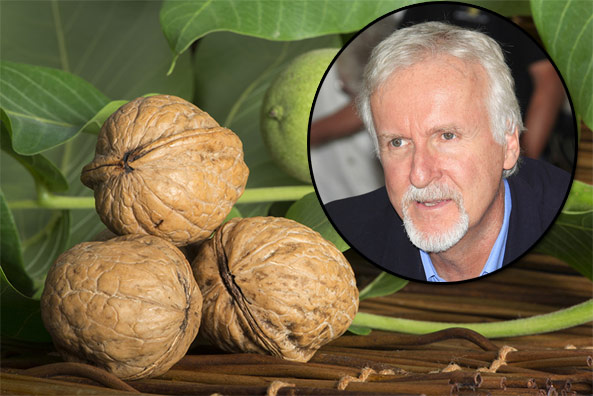 james cameron walnut farmer