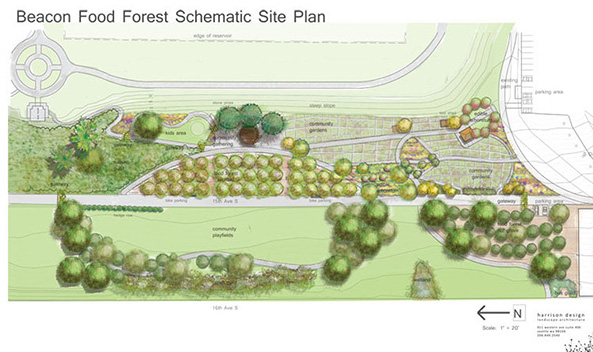 Seattle will build the largest public food forest in U.S.