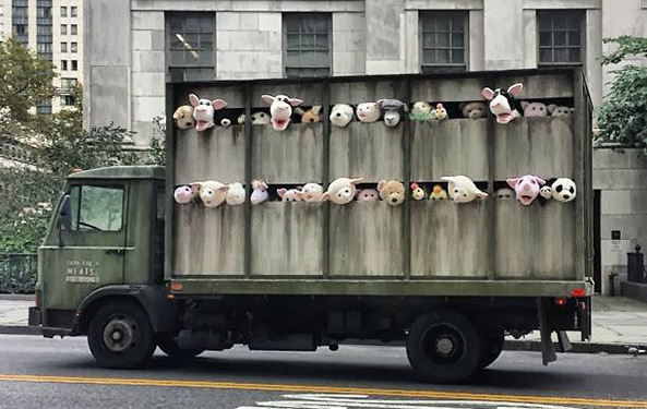 Recent Banksy street art makes statement for animal rights, animal suffering