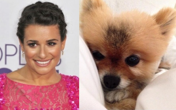 lea michele and dog